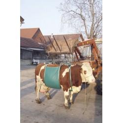 Ham pentru ridicat vaci